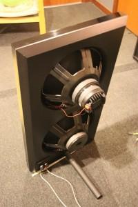 The rear of the speaker. It is a dipole speaker.