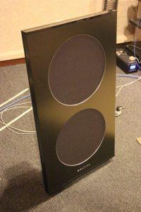 The Open Baffle Spatial Hologram M1 Turbo speaker.