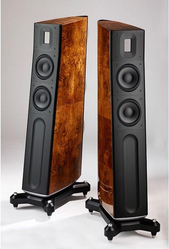 The Raidho D2.1 speakers
