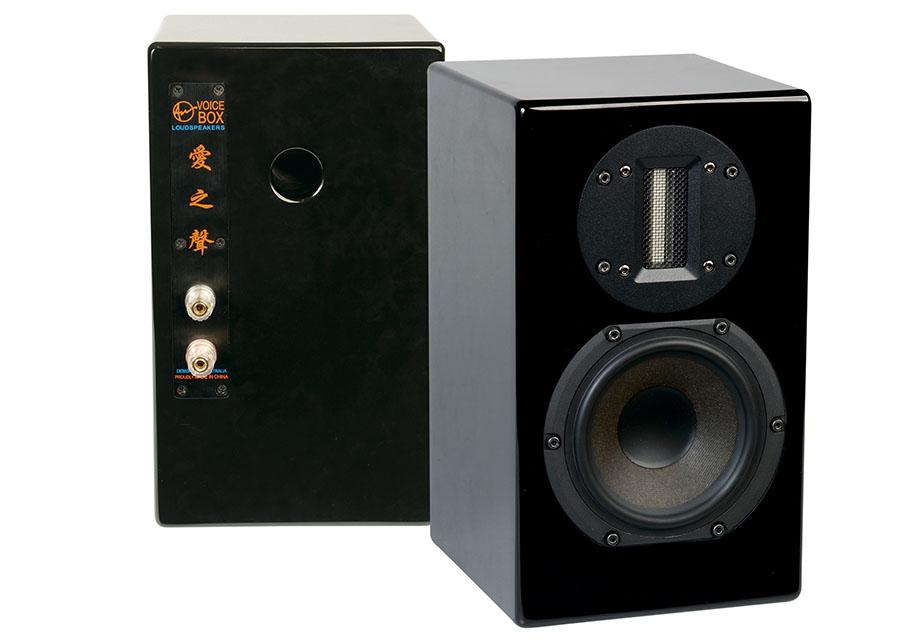 Axis Voicebox S Mini Monitors